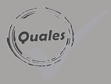 Quales Logo BPMWWW Grey
